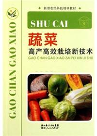 主要蔬菜高效栽培技术