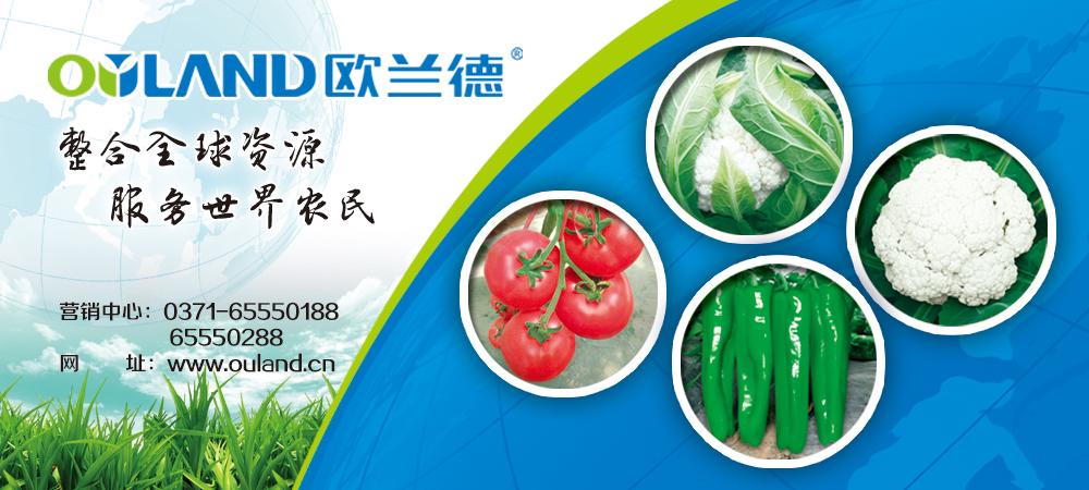 河南必威88网址种业种子公司——专家品质做中国第一诚信品牌